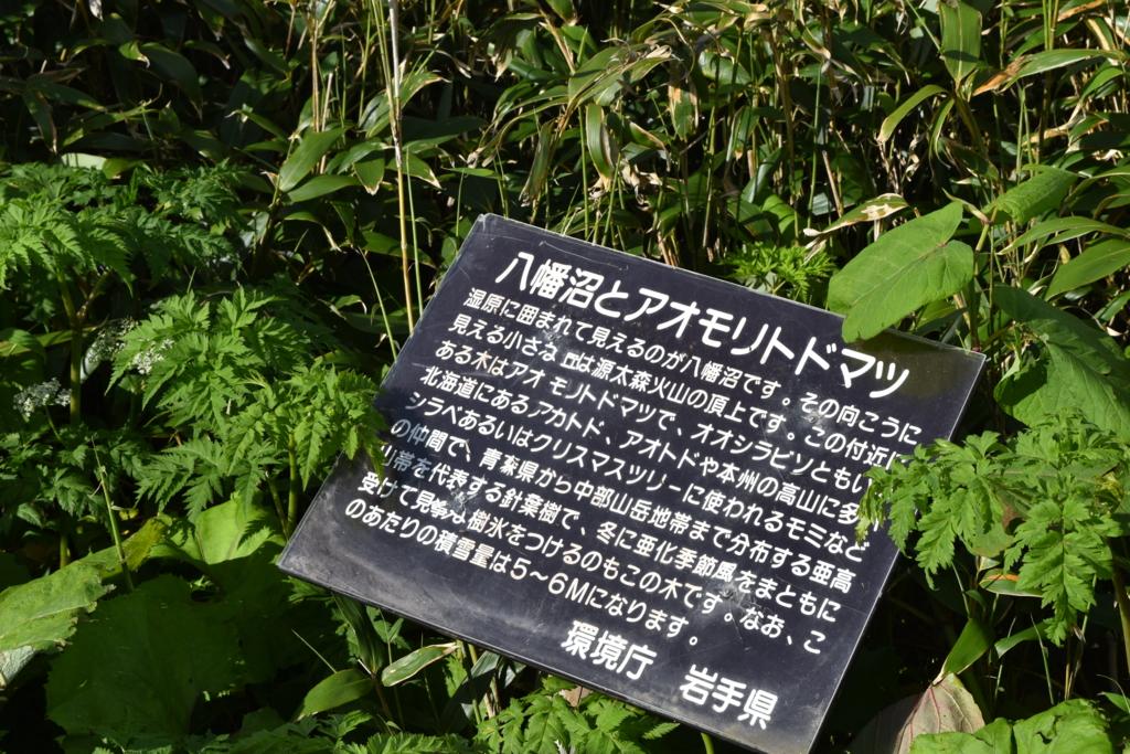 f:id:kitasennju_yamabu:20160831011144j:plain