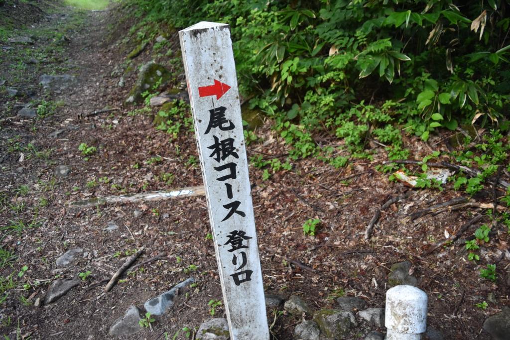 f:id:kitasennju_yamabu:20170201003232j:plain