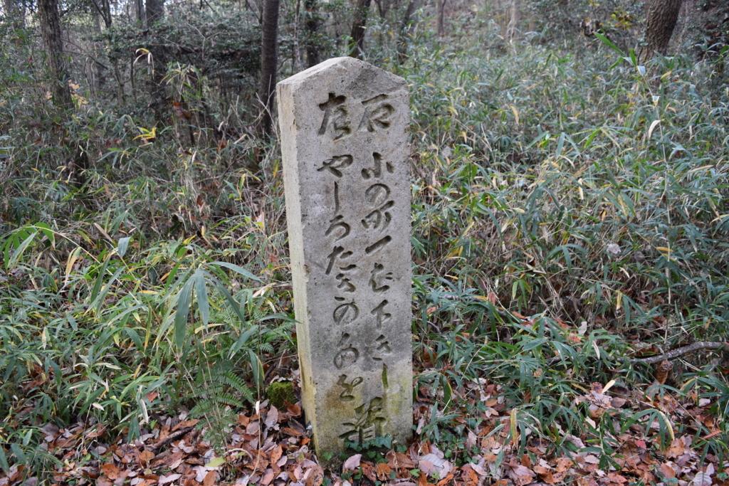 f:id:kitasennju_yamabu:20170814171717j:plain