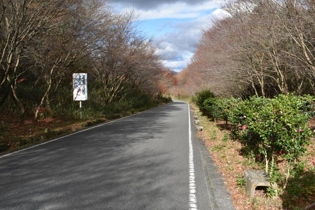 f:id:kitasennju_yamabu:20170815002102j:plain