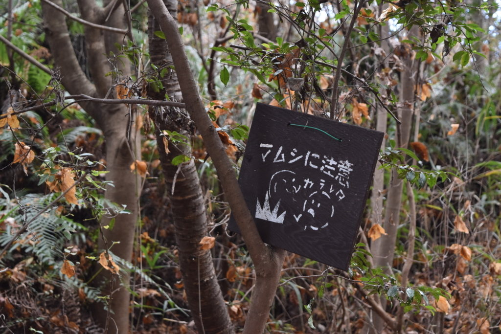 f:id:kitasennju_yamabu:20170815003237j:plain