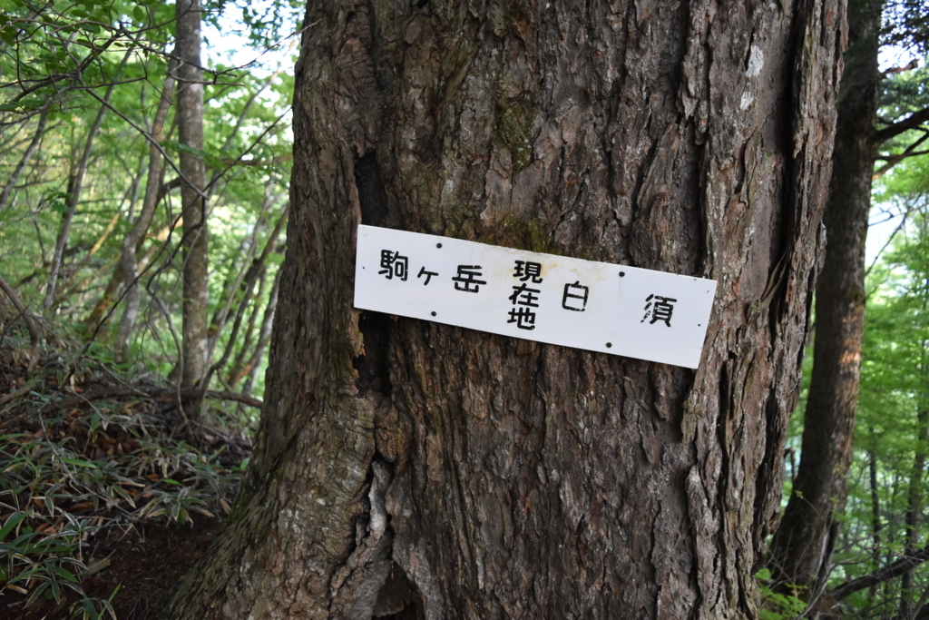 f:id:kitasennju_yamabu:20180115202213j:plain