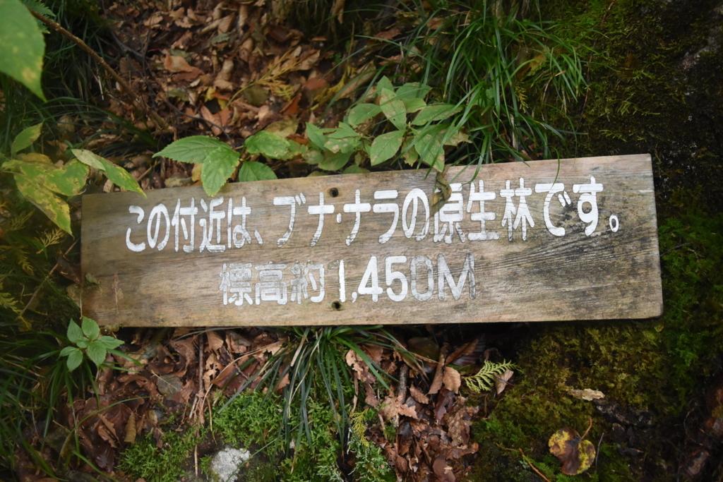 f:id:kitasennju_yamabu:20180227235319j:plain
