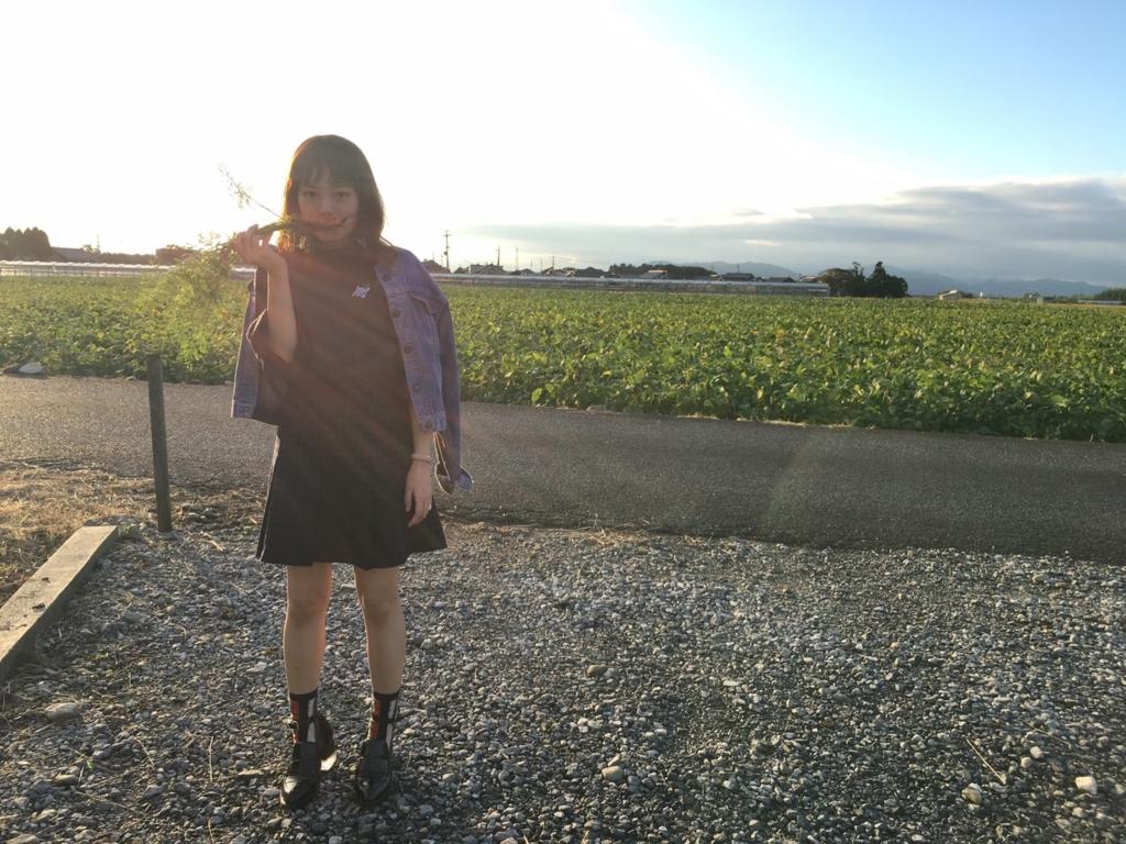 f:id:kitaurayouji:20161018222146j:plain
