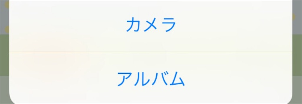 f:id:kitayama_eriko:20170811214543j:image