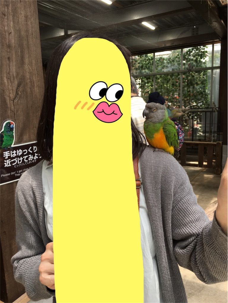 f:id:kitayama_eriko:20180629124134j:image