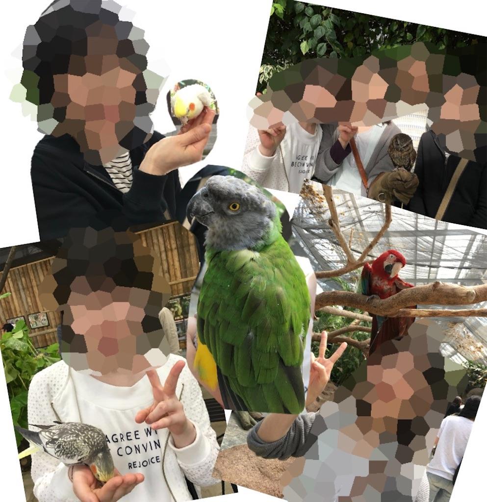 f:id:kitayama_eriko:20191205130013j:image