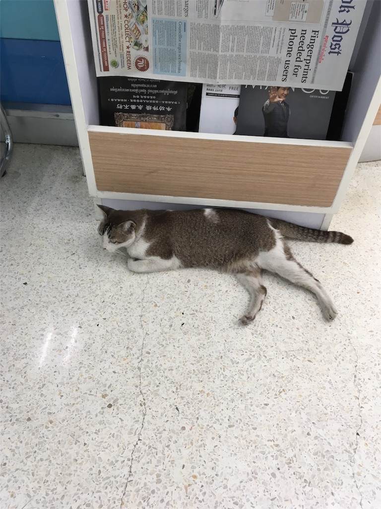 f:id:kitchannel:20180203111615j:plain