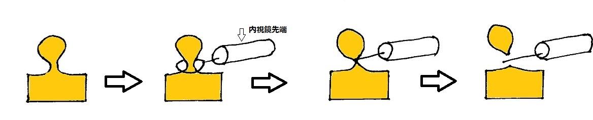 f:id:kite-cafe:20210915080318j:plain