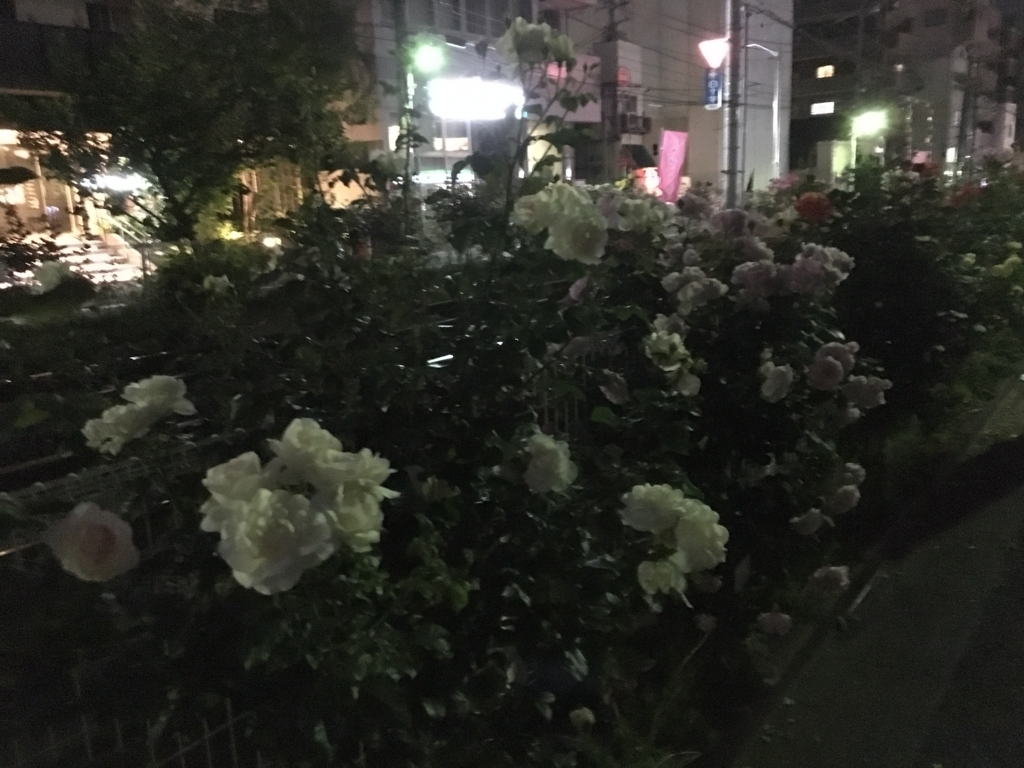 f:id:kitsuta23:20170531213803j:plain