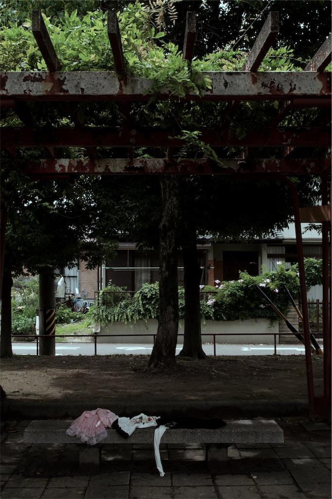 f:id:kiwamono:20190706161911j:image