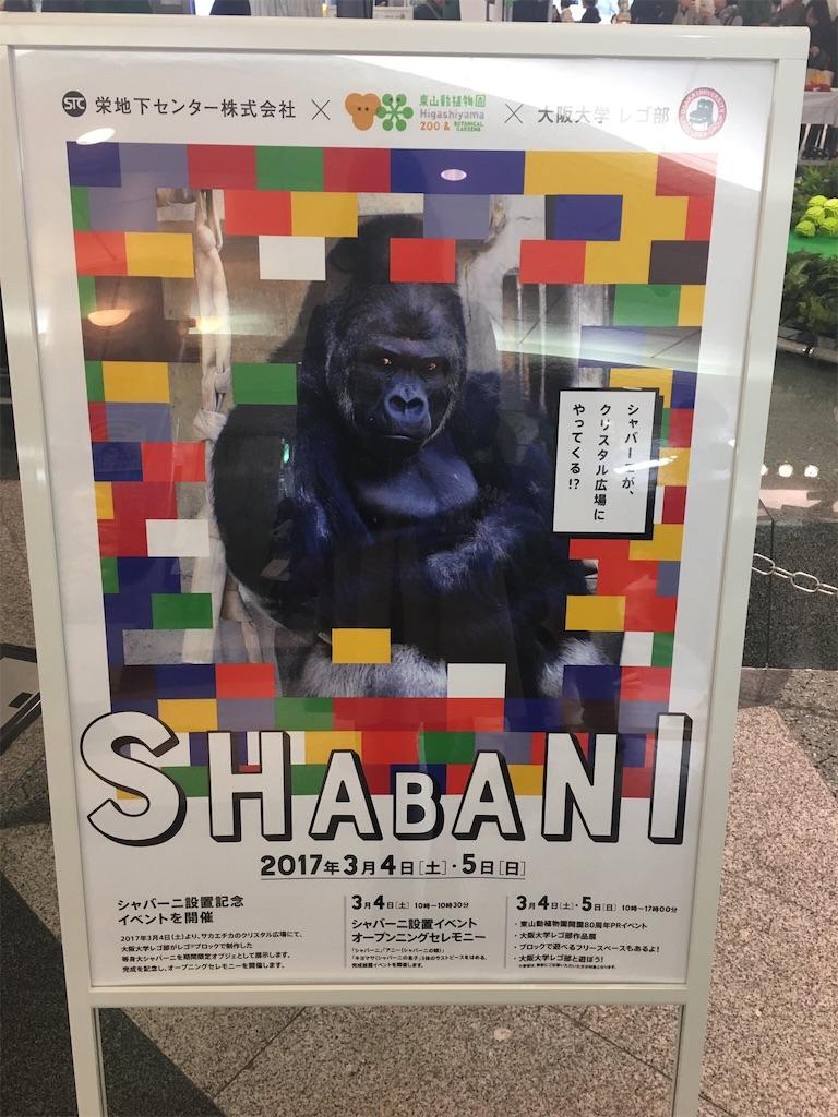 f:id:kiwi-chan:20170305104157j:image