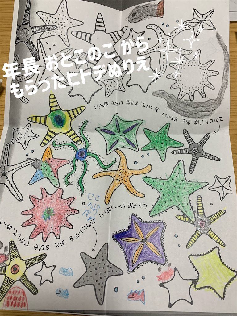f:id:kiwi-chan:20190112193838j:image