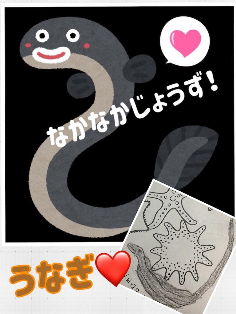 f:id:kiwi-chan:20190112195408j:image