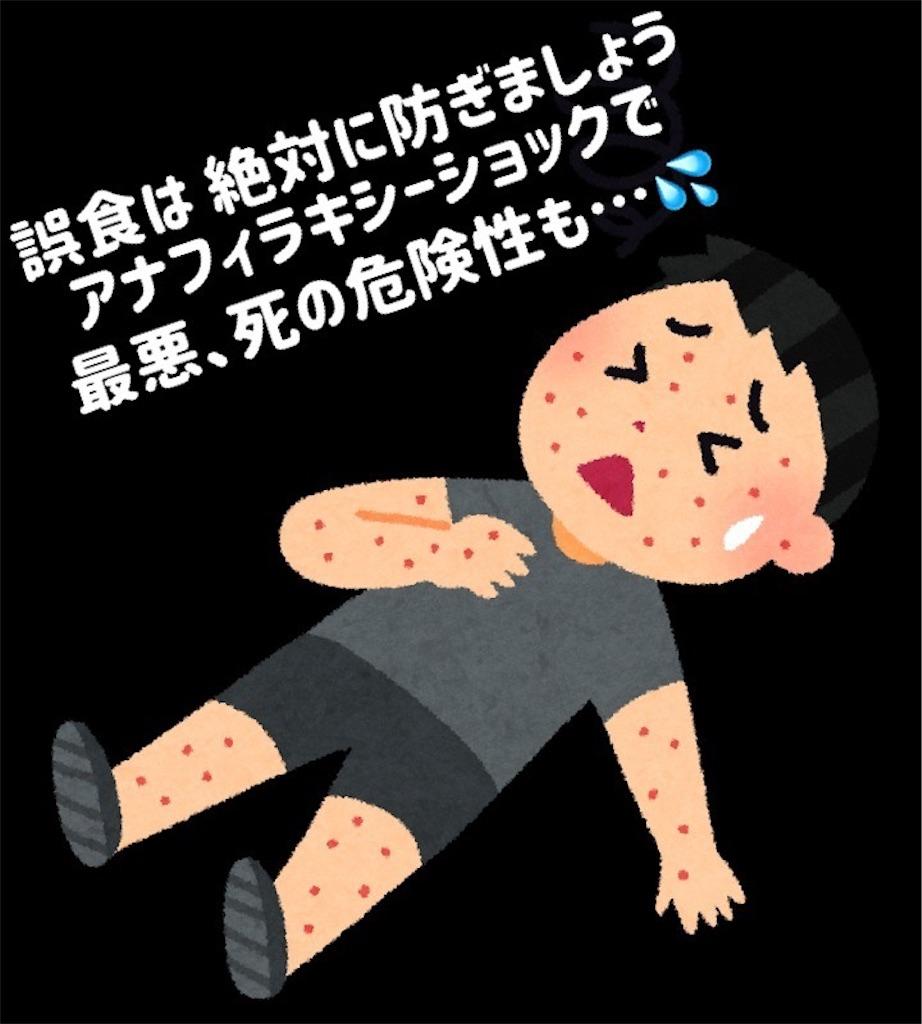 f:id:kiwi-chan:20190114004920j:image