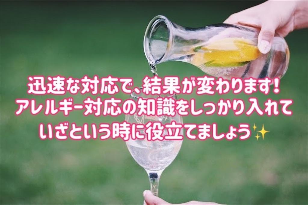 f:id:kiwi-chan:20190114011515j:image