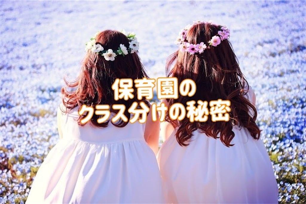 f:id:kiwi-chan:20190117213043j:image
