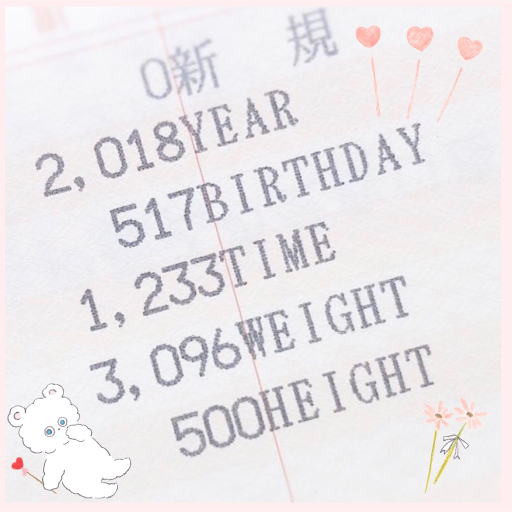f:id:kiwi-chan:20190218221240j:image