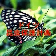 f:id:kiwipan:20190220165625j:plain