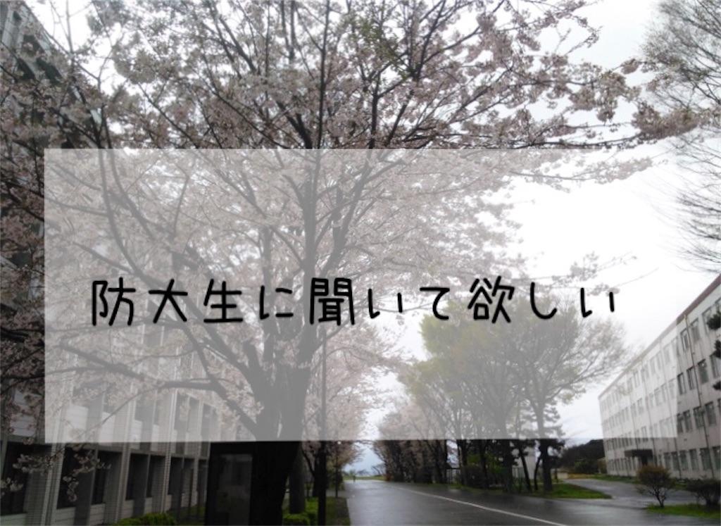 f:id:kiwiyoyoyoyoyo:20191012214253j:image