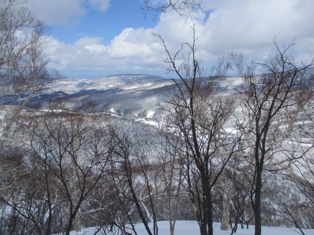 f:id:kiyatchi:20200315113850j:plain