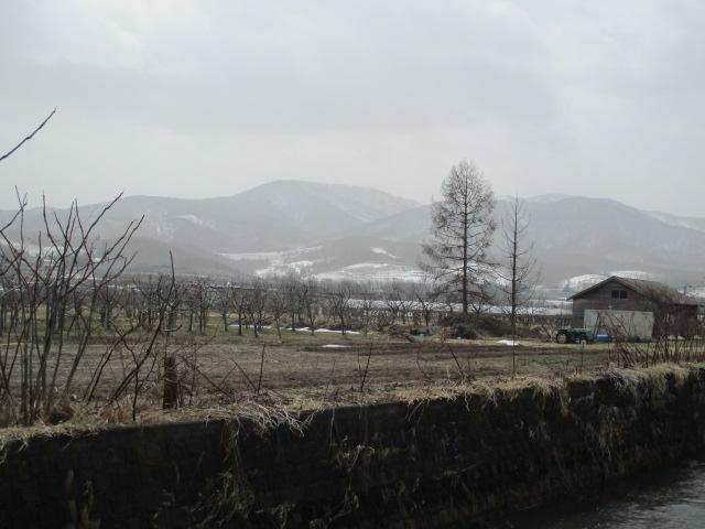 f:id:kiyatchi:20210330192505j:plain