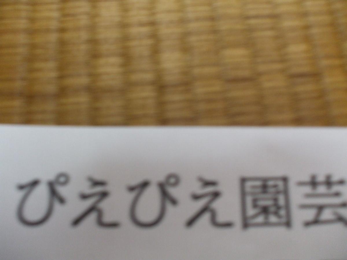 f:id:kiyo-binbou:20200605132216j:plain