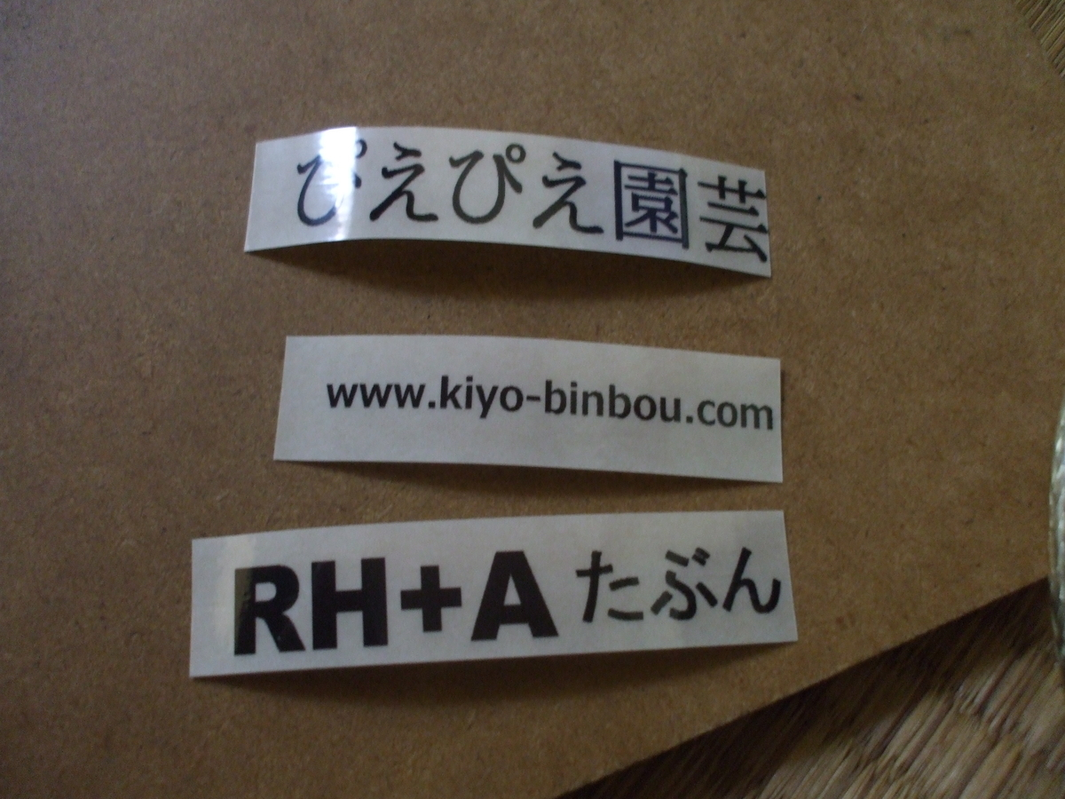 f:id:kiyo-binbou:20200605132430j:plain