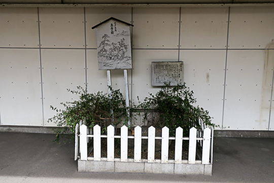 f:id:kiyo-maro:20170304101423j:plain