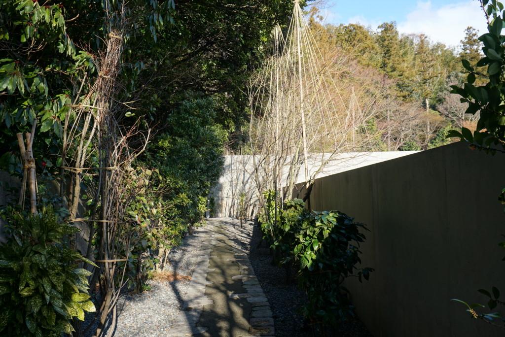鈴木大拙館から石川県立美術館への道
