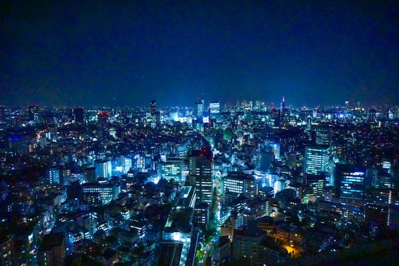 恵比寿ガーデンプレイスから見た新宿の夜景