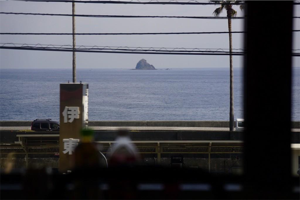 伊豆急行線から見た海
