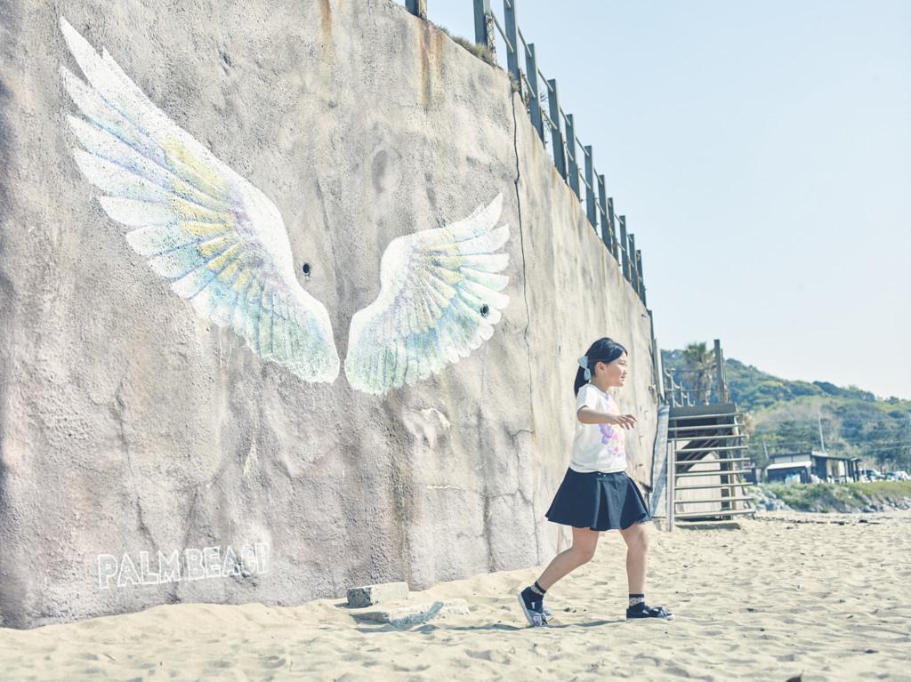 PALM BEACHの羽
