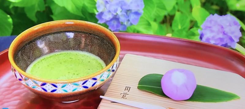 東慶寺内の茶屋