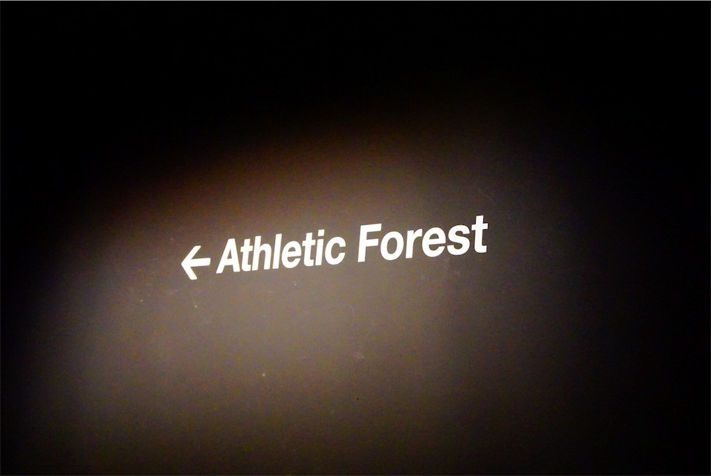 Athletic Forest