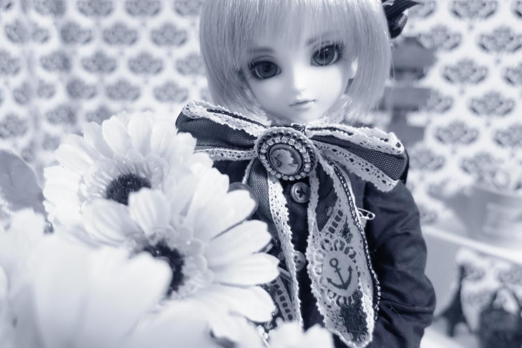 f:id:kiyokarin:20170213041340j:plain