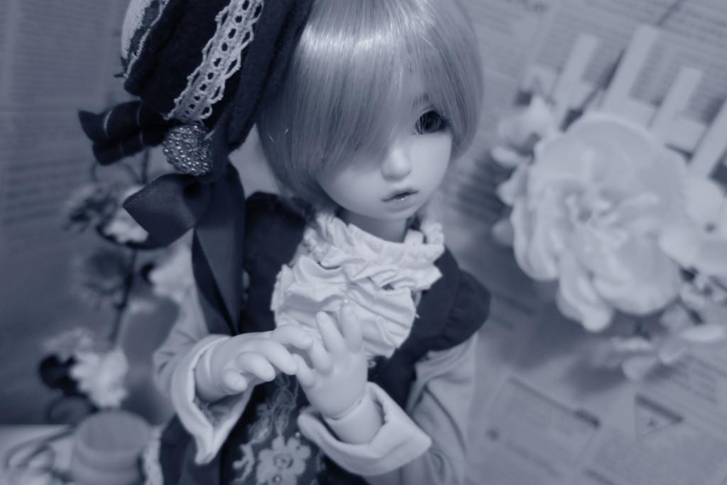 f:id:kiyokarin:20170406224954j:plain