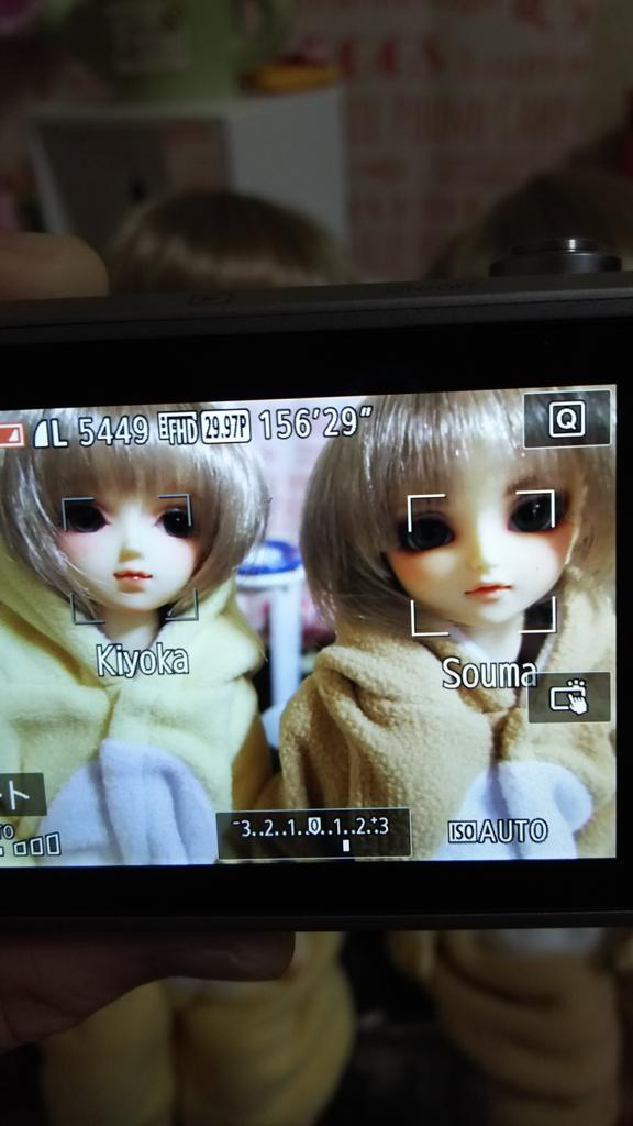f:id:kiyokarin:20170410225513j:plain