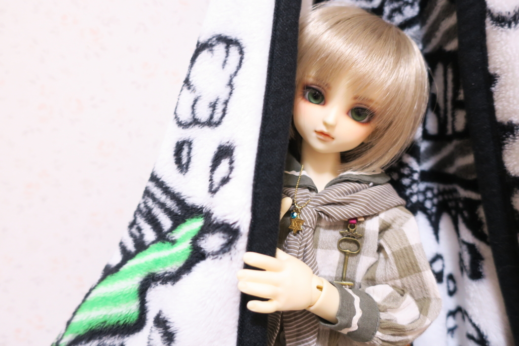 f:id:kiyokarin:20171017213831j:plain