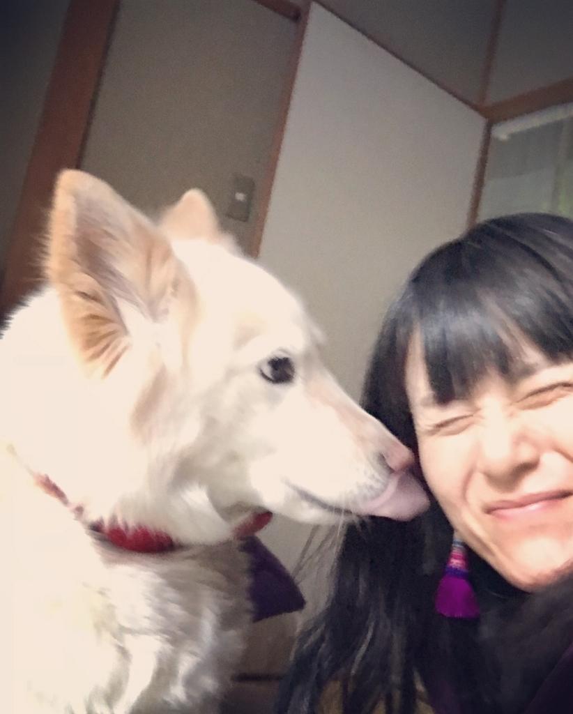 f:id:kiyokumakiyokuma:20180101210926j:plain
