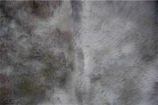 f:id:kiyokumakiyokuma:20180212214148j:image