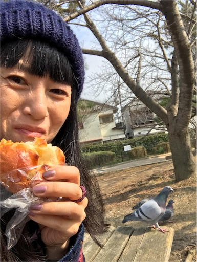 f:id:kiyokumakiyokuma:20180215123927j:image