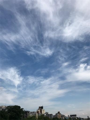 f:id:kiyokumakiyokuma:20180604223829j:image