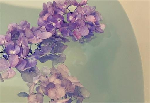 f:id:kiyokumakiyokuma:20180610224259j:image