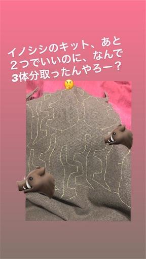 f:id:kiyokumakiyokuma:20190109173928j:image