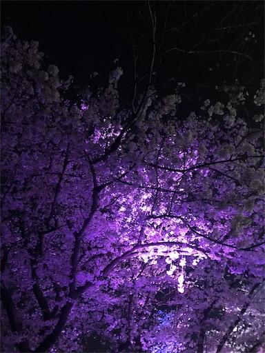 f:id:kiyokumakiyokuma:20190409221757j:image