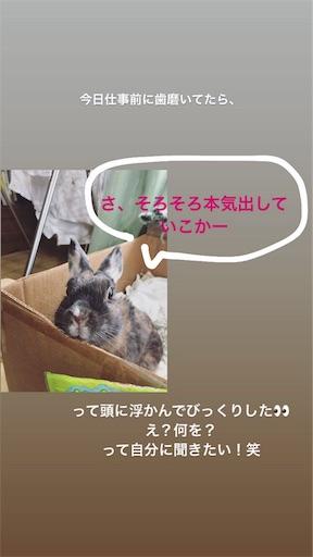 f:id:kiyokumakiyokuma:20190605003037j:image