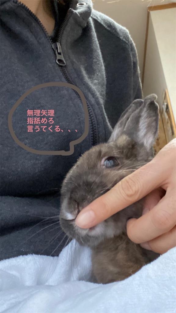 f:id:kiyokumakiyokuma:20200226225956j:image