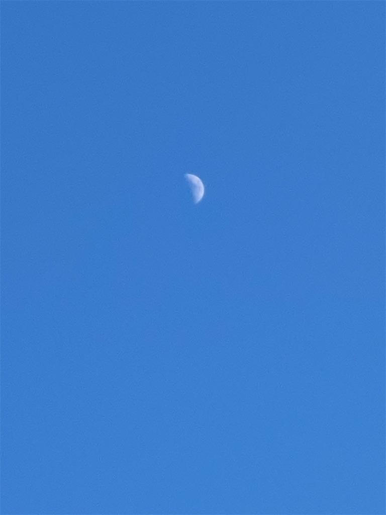 f:id:kiyokumakiyokuma:20210123102513j:image
