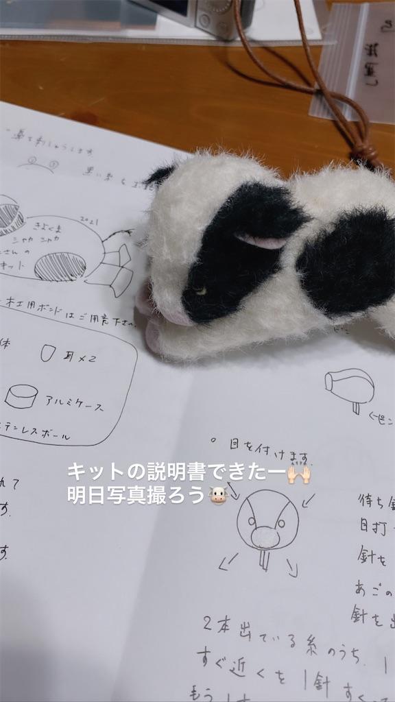 f:id:kiyokumakiyokuma:20210125222201j:image